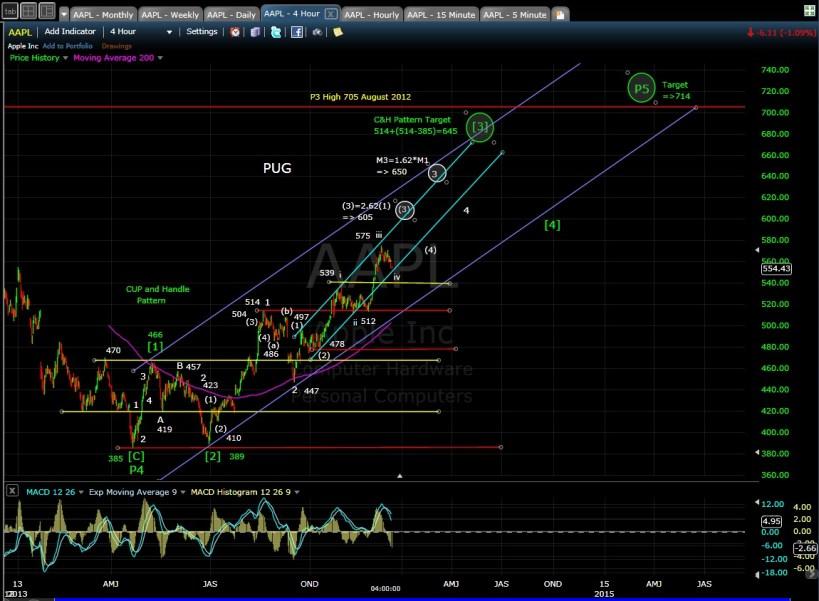 PUG AAPL 4-hr chart 12-13-13
