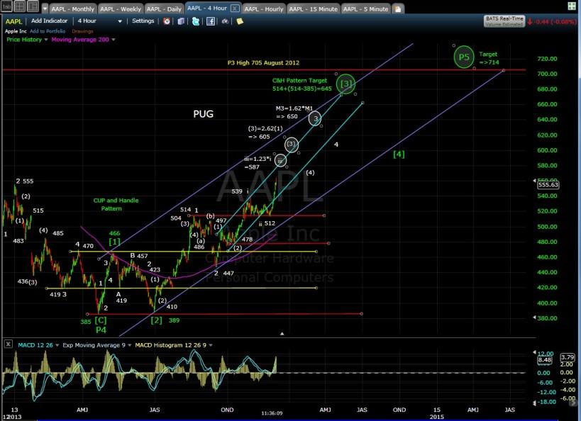 PUG AAPL 4-hr chart 12-2-13