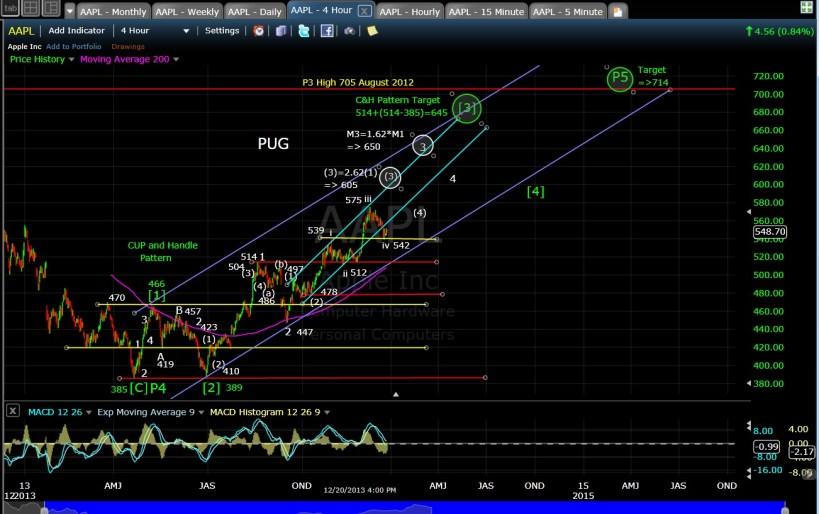 PUG AAPL 4-hr chart EOD 12-20-13