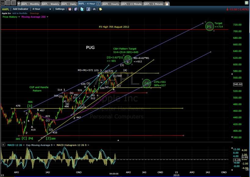 PUG AAPL 4-hr chart EOD 1-17-14