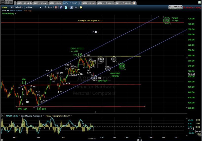 PUG AAPL 4-hr chart MD 1-28-14