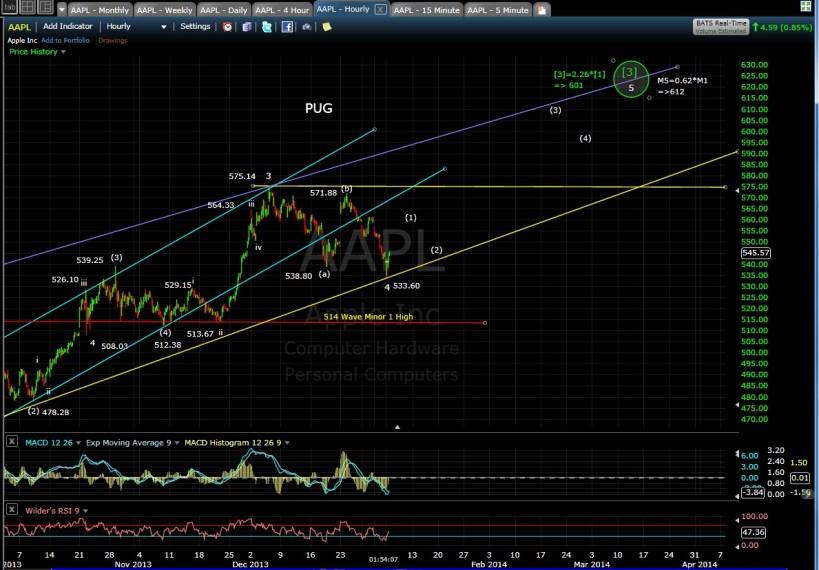 PUG AAPL 60-min chart 1-6-14