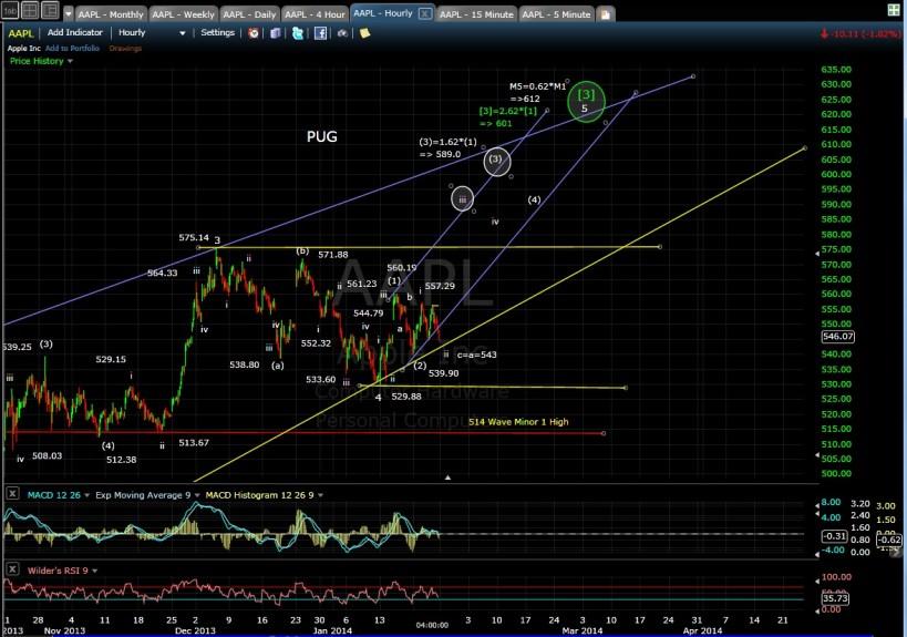PUG AAPL 60-min chart EOD 1-24-14