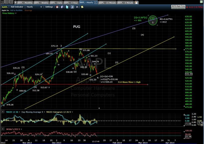 PUG AAPL 60-min chart MD 1-10-14