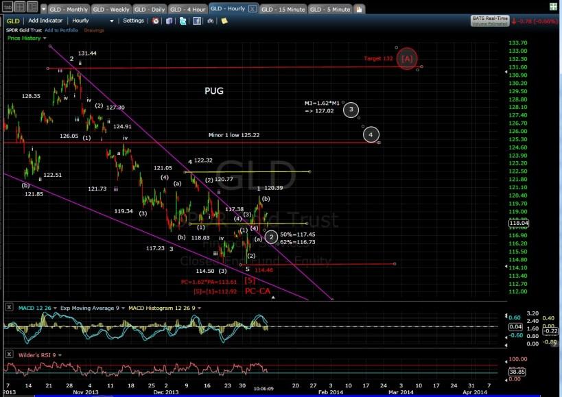 PUG GLD 60-min chart MD 1-8-13