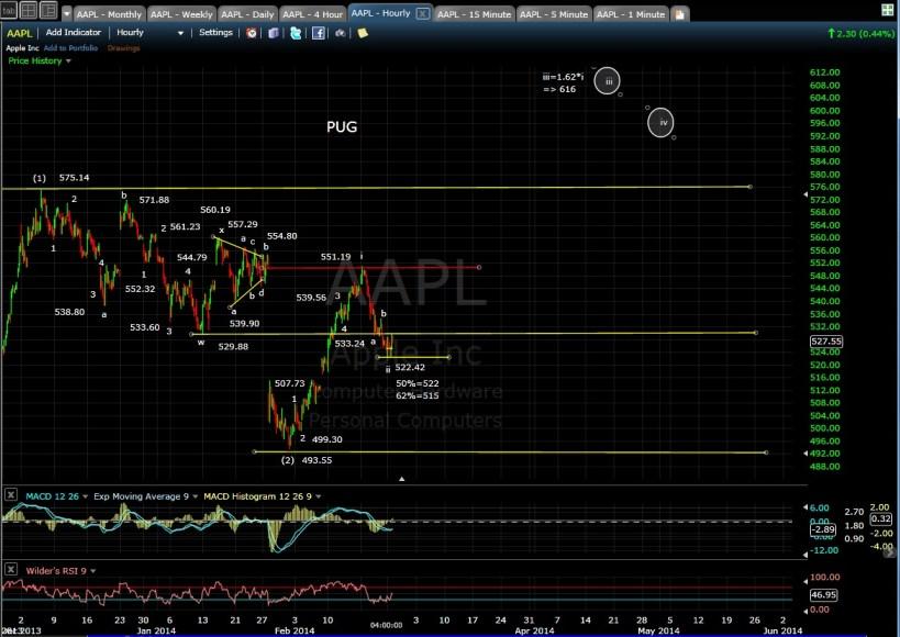 PUG AAPL 60-min chart EOD 2-24-14