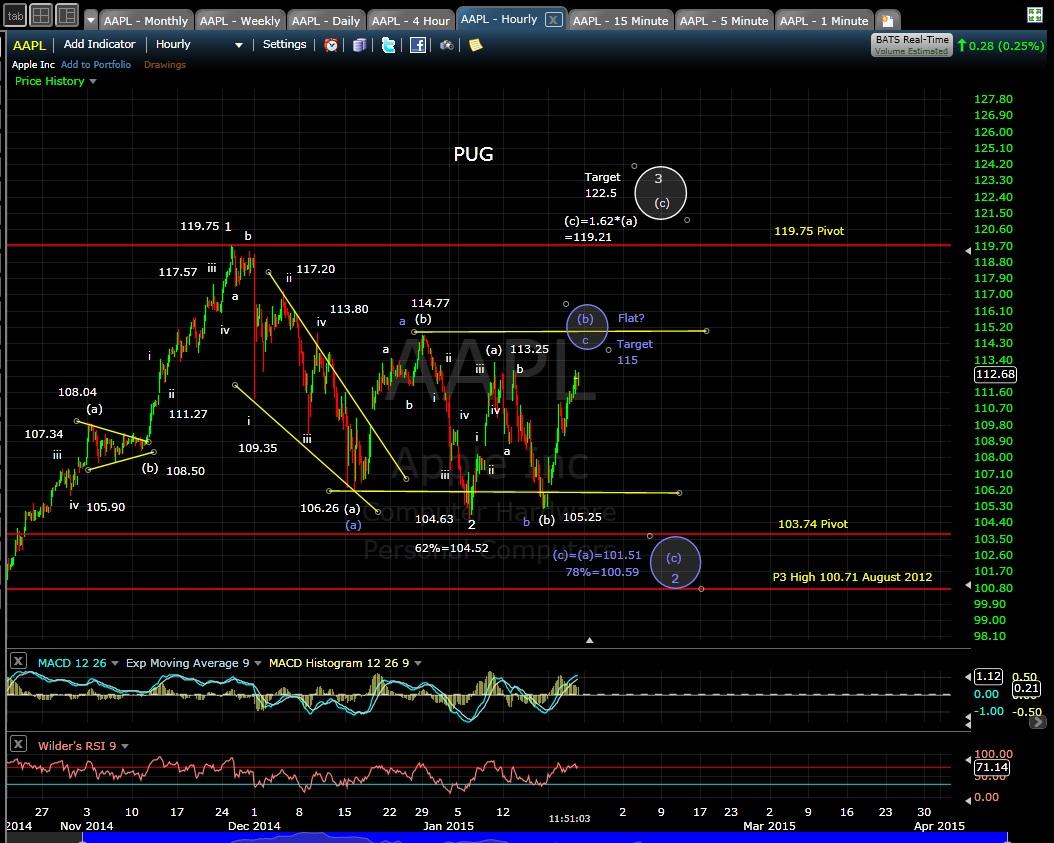 PUG AAPL 60-min chart MD 1-23-15