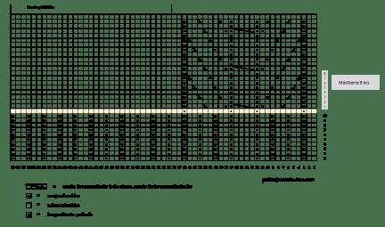 Mantelit punaiset pitsisukat varren kaavio