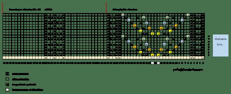 Saarnit kaavio