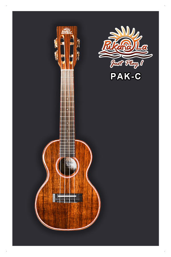 PAK-C-01