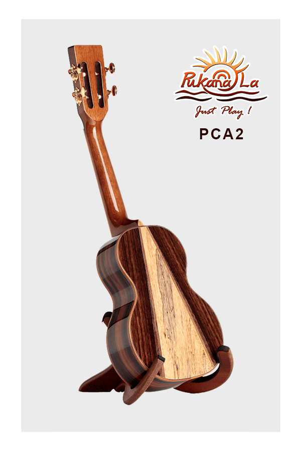 PCA2-04