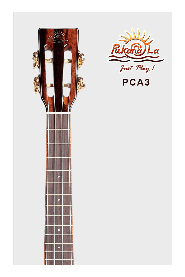 PCA3-05