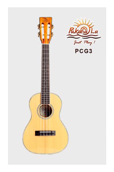 PCG3-01