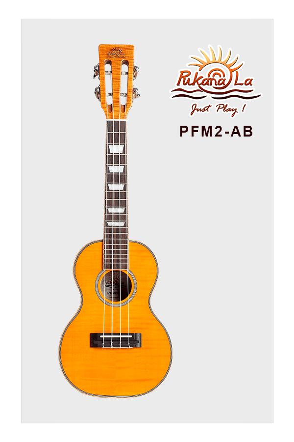 PFM2-AB-01