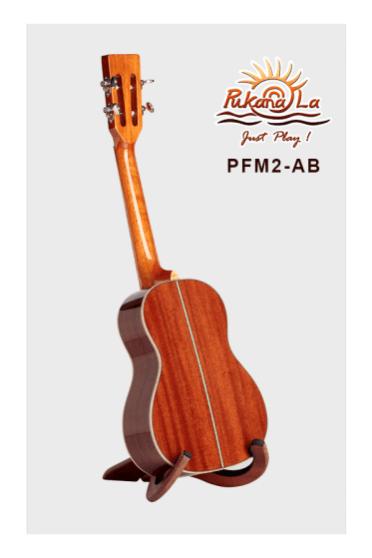 PFM2-AB-04