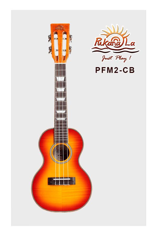 PFM2-CB-01