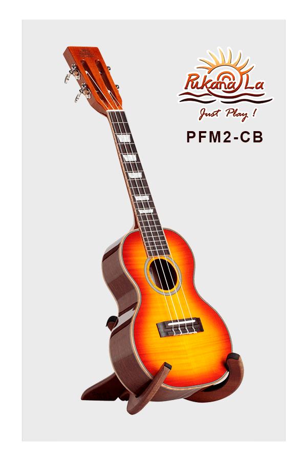 PFM2-CB-03
