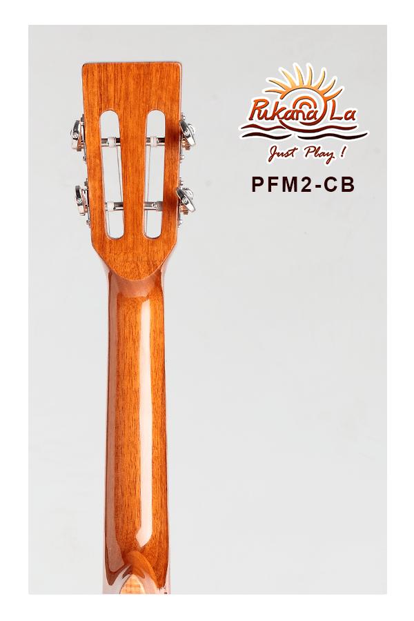 PFM2-CB-06