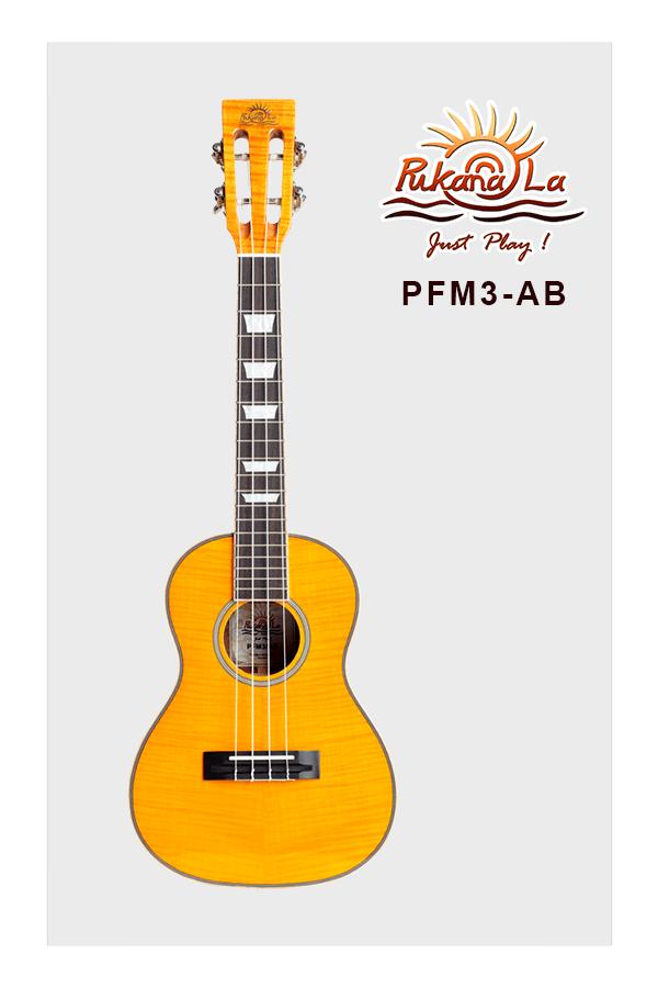 PFM3-AB-01