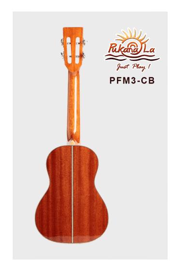 PFM3-CB-02