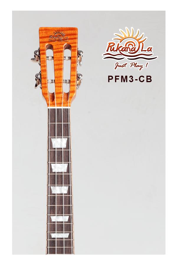 PFM3-CB-05