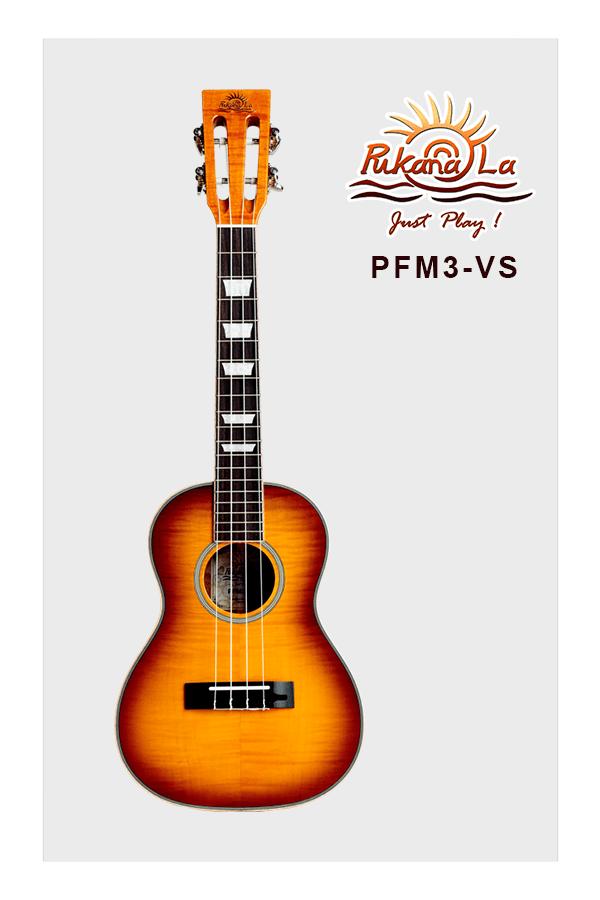 PFM3-VS-01