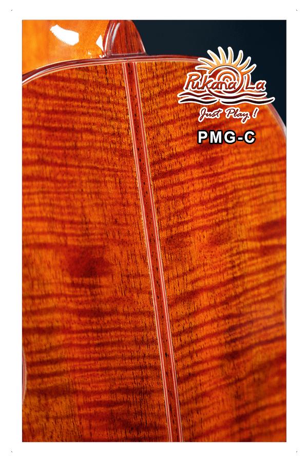 PMG-C-10