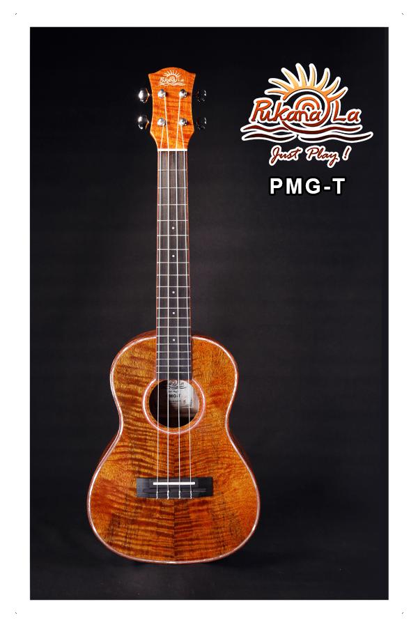 PMG-T-01