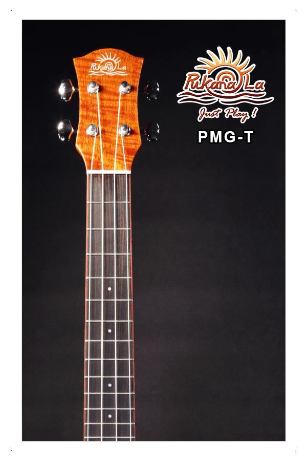 PMG-T-05