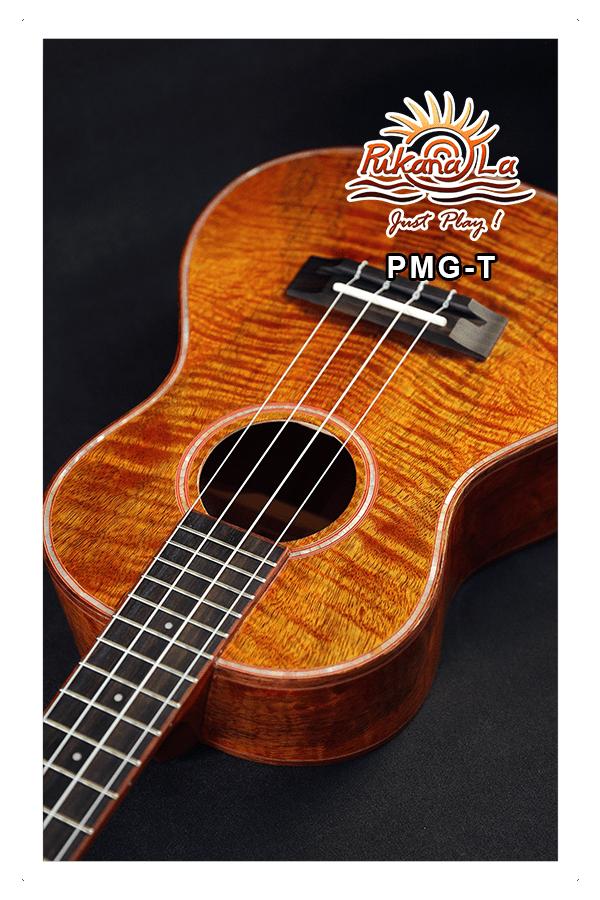 PMG-T-10