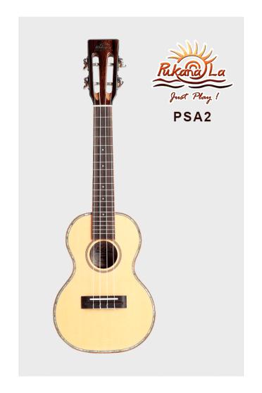 PSA2-01