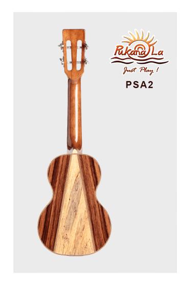 PSA2-02