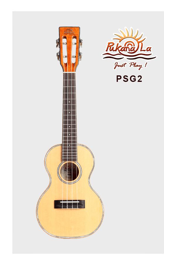 PSG2-01