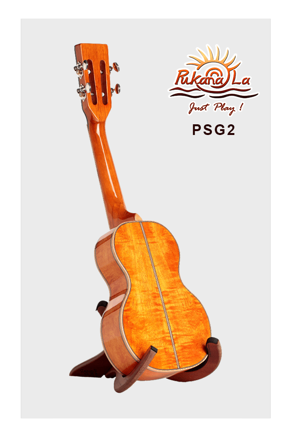PSG2-04