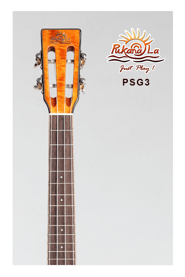 PSG3-05