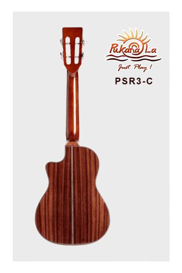 PSR3-C-02