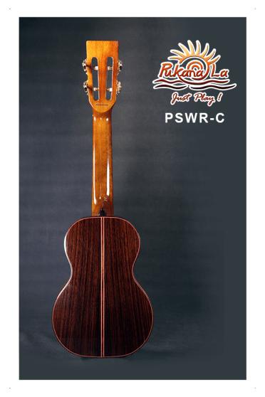PSWR-C-02