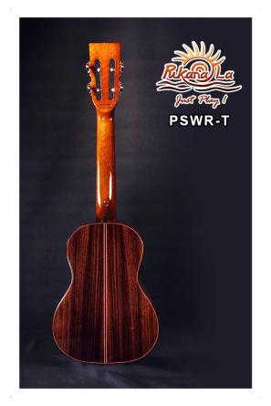 PSWR-T-02