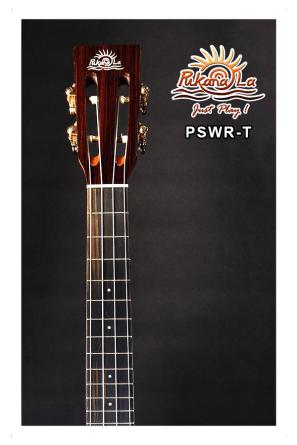 PSWR-T-06