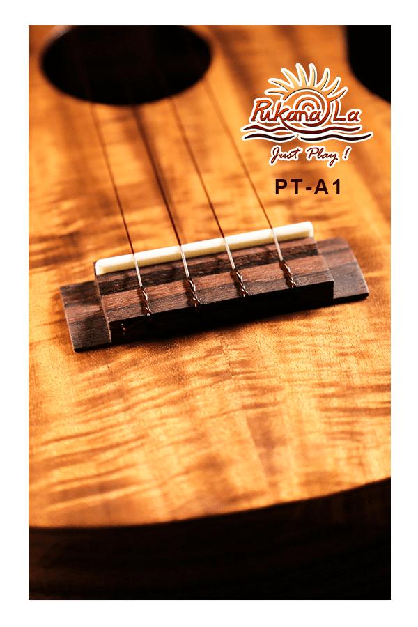 PT-A1-07