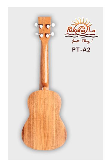 PT-A2-02