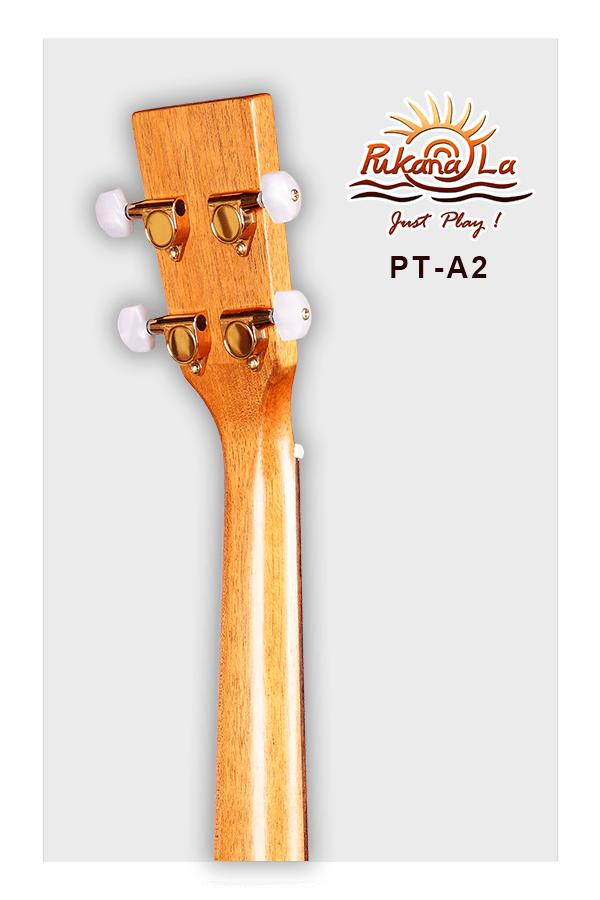 PT-A2-06
