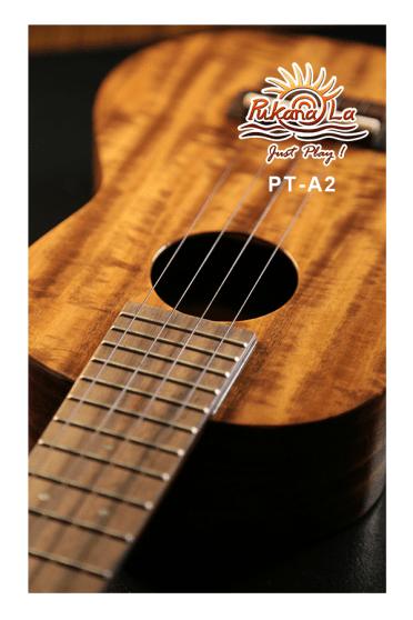PT-A2-09