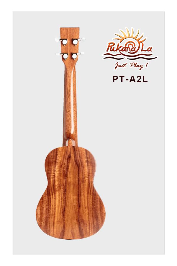 PT-A2L-02