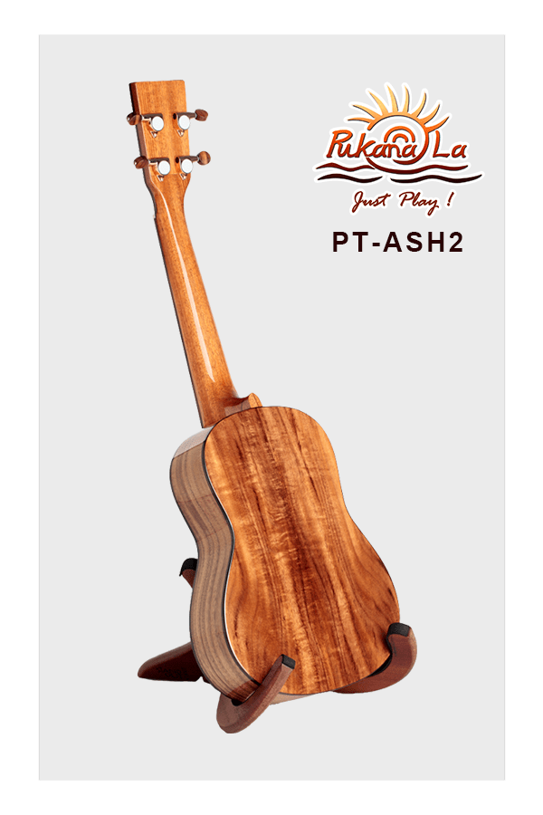 PT-ASH2-04