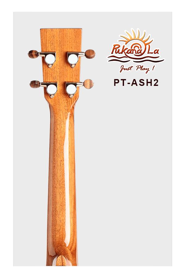 PT-ASH2-06