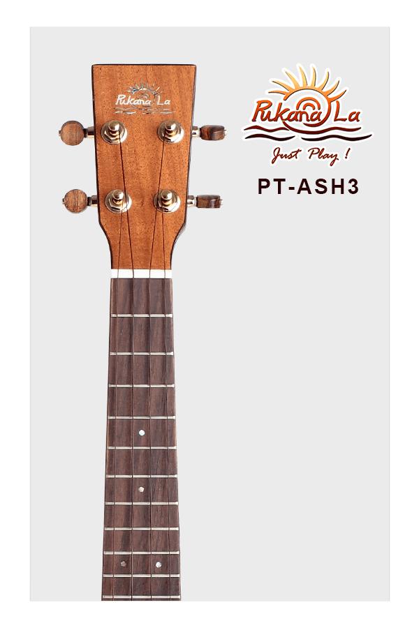 PT-ASH3-05