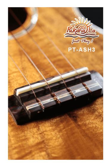 PT-ASH3-08