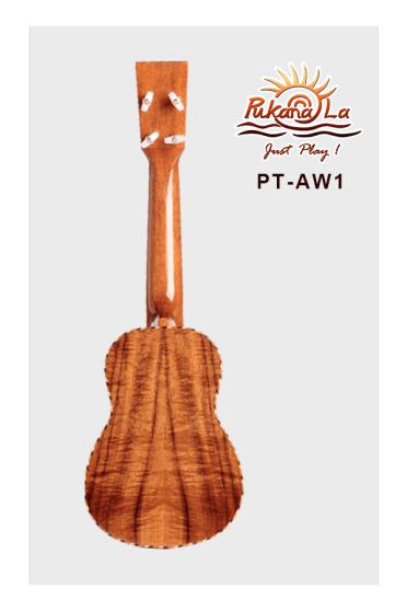 PT-AW1-02