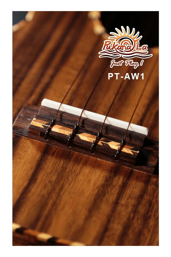 PT-AW1-08